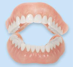 Dentures model